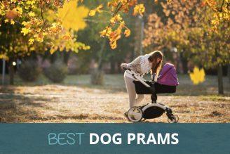 best dog pram