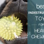 Indestructible Dog Toys for Heavy Chewers