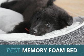 Luxury Memory Foam Bed: Orthopedic, Waterproof & Washable: Buy on Amazon UK