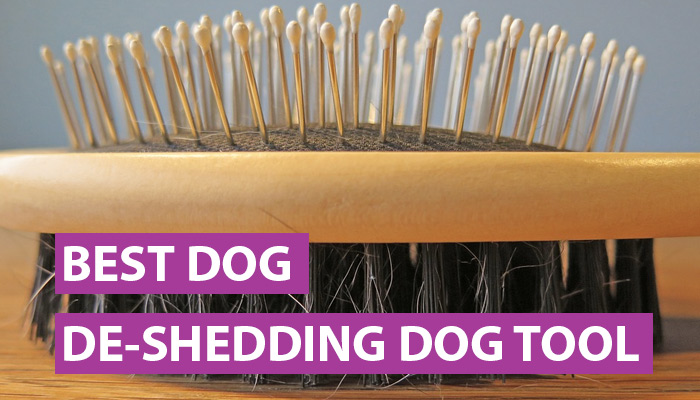 best dog deshedding tool