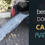 Best Dog Car Ramps: Folding and Telescopic for Old or Heavy Dogs