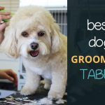 Best Dog Grooming Table: Folding, Electric and Hydraulic