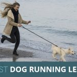 Best Dog Running Lead for Jogging With Your Pooch