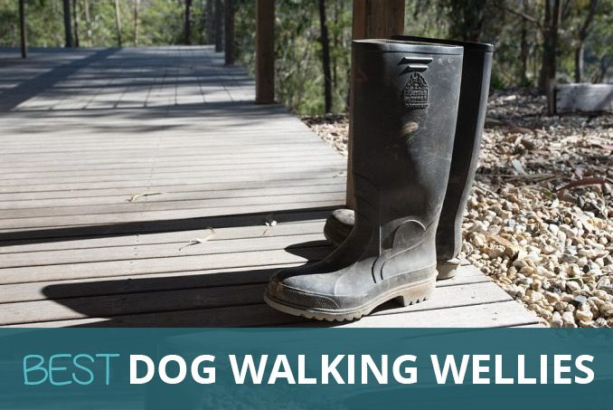 0ffb9dcabeb Best Wellies for Walking the Dog  Comfort
