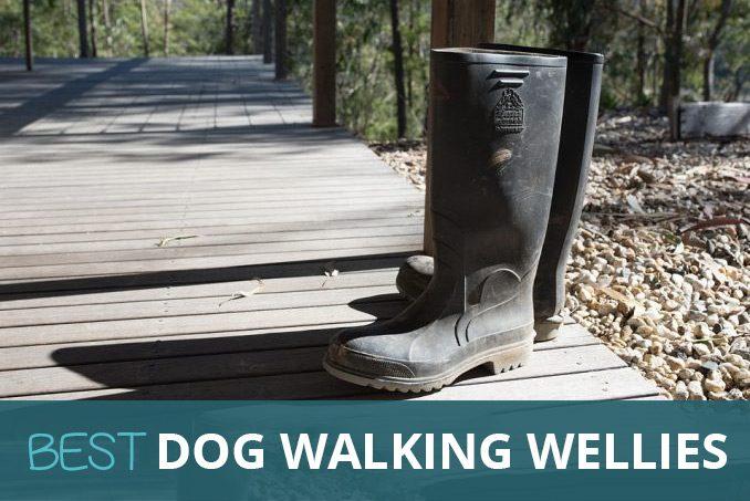 best dog walking wellies