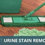 Best Dog Stain and Urine Removers: Odor Eliminators for Removing Dog's Urine Smell (2018)