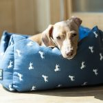Best Heated Dog Beds 2018: Keep Your Pooch Warm