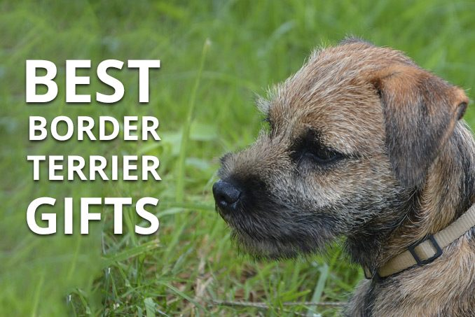 best border terrier gifts