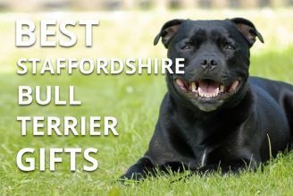 best staffordshire bull terrier gifts