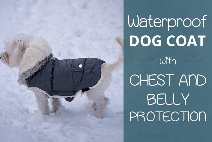 Buy on Amazon UK: Waterproof Dog Coat with Chest & Belly Protection