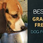 Best Grain Free Dog Food UK