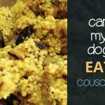Can Dogs Eat Couscous?