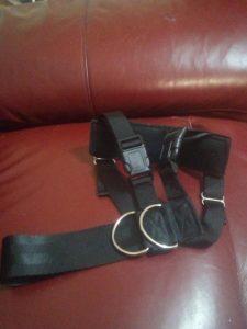 Buy Dog Car Belt Harness UK